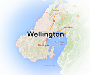 Wellington_safety_net_installers